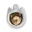 Cat Picture Frame Charms